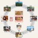 コラム「夢ハウスの自然環境に優しい家づくり」のサムネイル画像